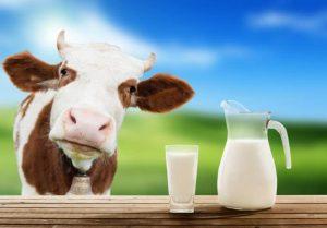 Read more about the article Leite emagrece ou engorda? Saiba quando e quem pode consumir!
