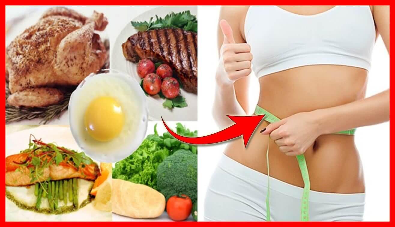 Dieta Da Proteína – Perca Até 7 Kg Em 14 Dias
