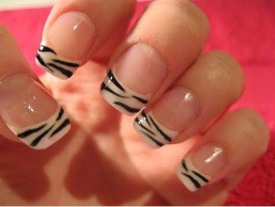 francesinha de zebra