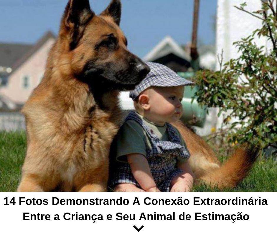 14 fotos demonstrando a conexão extraordinária entre a criança e seu animal de estimação