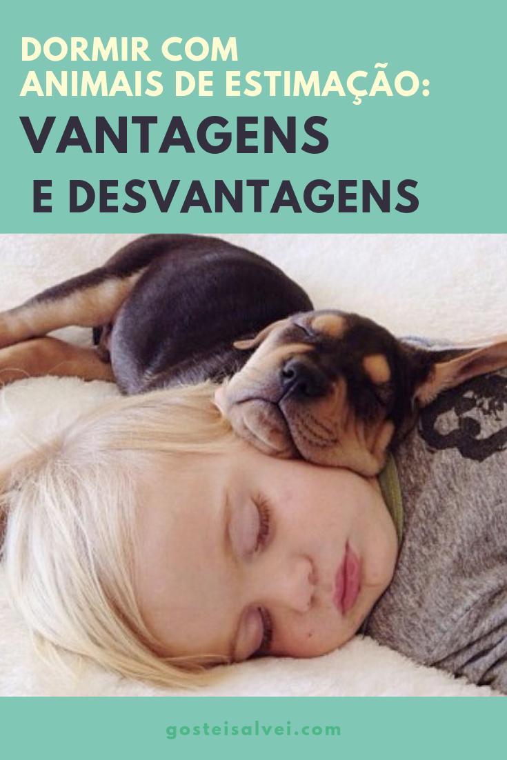 You are currently viewing Dormir Com Animais De Estimação: Vantagens e Desvantagens