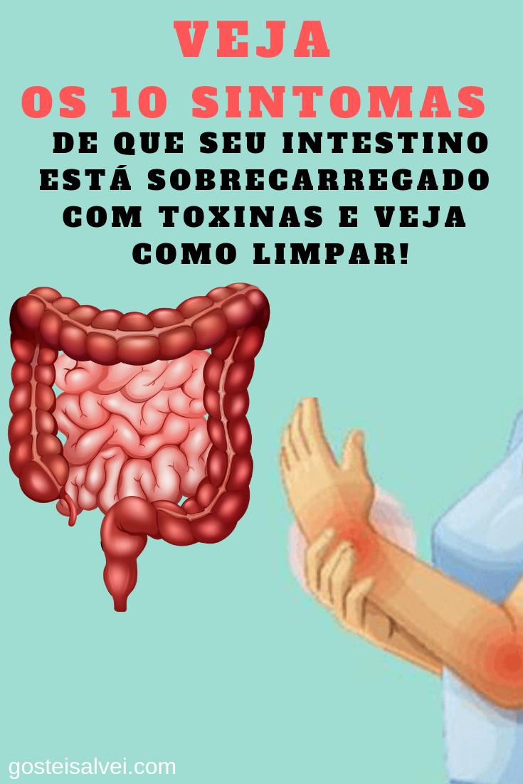 You are currently viewing Veja Os 10 Sintomas De Que Seu Intestino Está Sobrecarregado Com Toxinas e Veja Como Limpar!