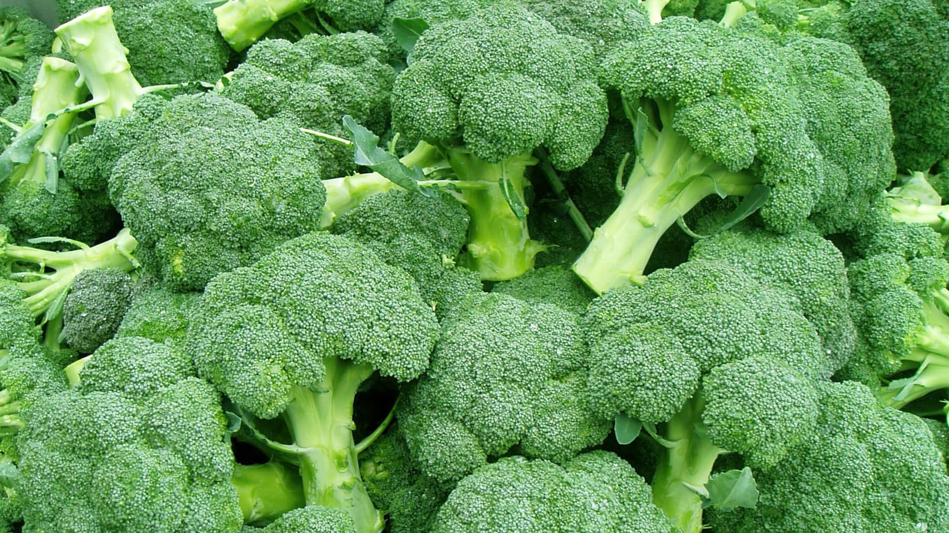 O Caminho Certo Para Comer Brócolis: Aprenda Como Preparar Corretamente!