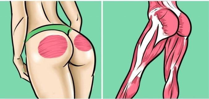 Coloque Esses Exercícios Na Sua Rotina Para Tonificar Glúteos e Pernas Em 1 Semana