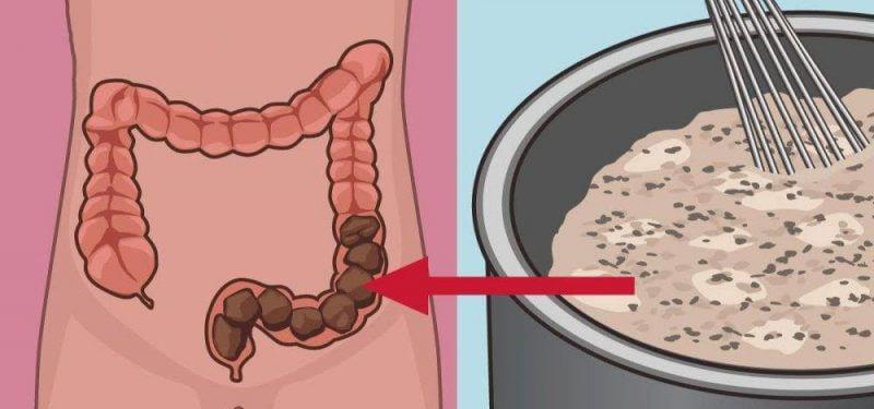 Por Que é Importante Limpar o Intestino Regularmente? Seu Corpo Irá Te Agradecer