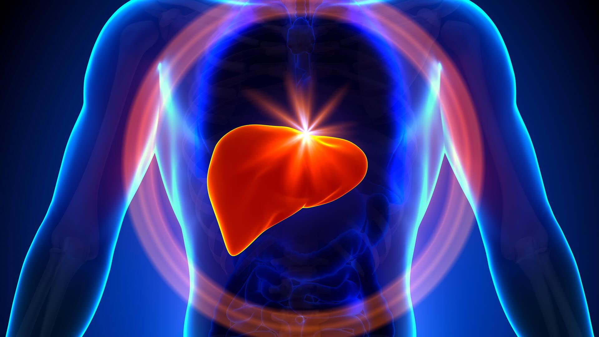 7 Chás Noturnos Para Desintoxicar o Fígado e Queimar Gorduras
