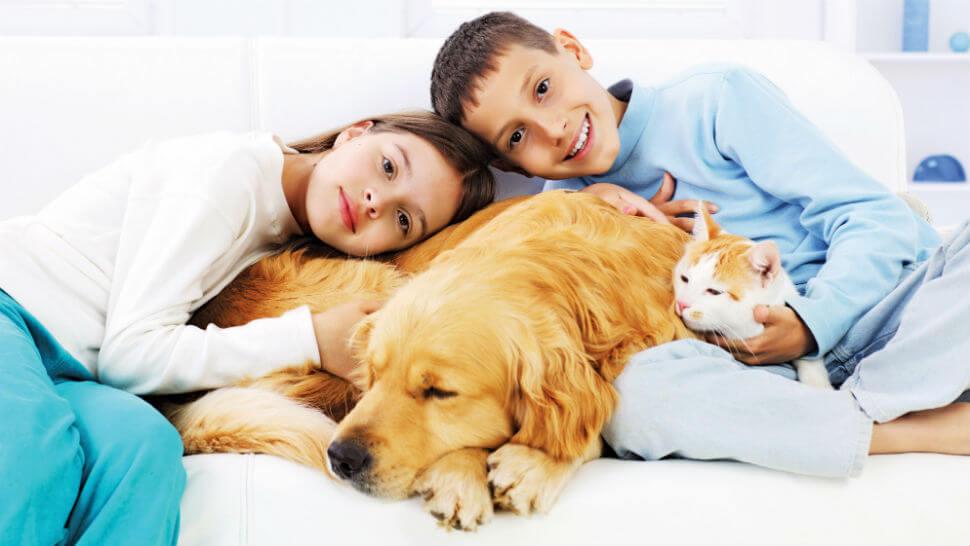 17 Razões que vão convencer qualquer pessoa a ter um cachorro em casa – O #4 é o meu preferido