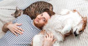 Cão ou gato? Sua escolha diz muito sobre sua personalidade!