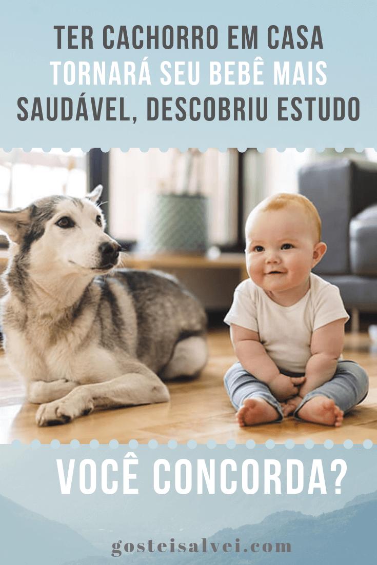 Ter Cachorro Em Casa Tornará Seu Bebê Mais Saudável, Descobriu Estudo. Você Concorda?