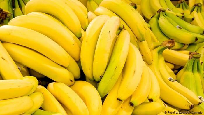 Se você gosta de bananas PARE tudo o que está fazendo e leia isso
