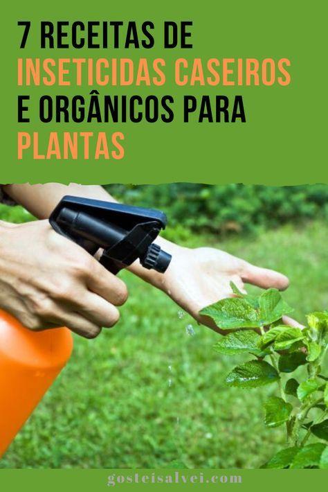 You are currently viewing 7 Receitas de inseticidas caseiros e orgânicos para plantas