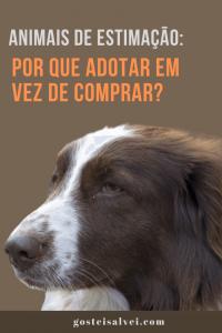 Animais de Estimação: Por que adotar em vez de comprar?