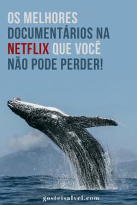 Read more about the article Os melhores documentários na Netflix que você não pode perder!