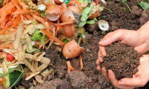 Read more about the article Compostagem: Aprenda como reciclar resíduos orgânicos em casa!