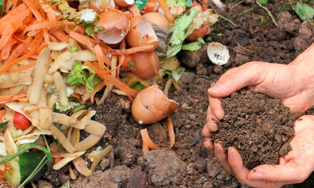 Compostagem: Aprenda como reciclar resíduos orgânicos em casa!
