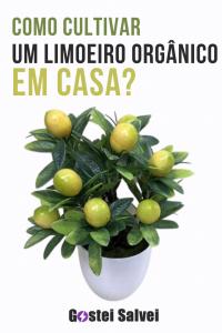 Como cultivar um limoeiro orgânico em casa?