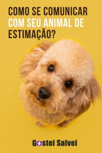 Como se comunicar com seu animal de estimação?