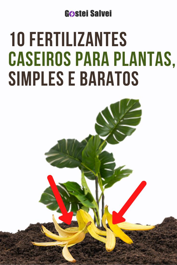 You are currently viewing 10 Fertilizantes caseiros para plantas, simples e baratos