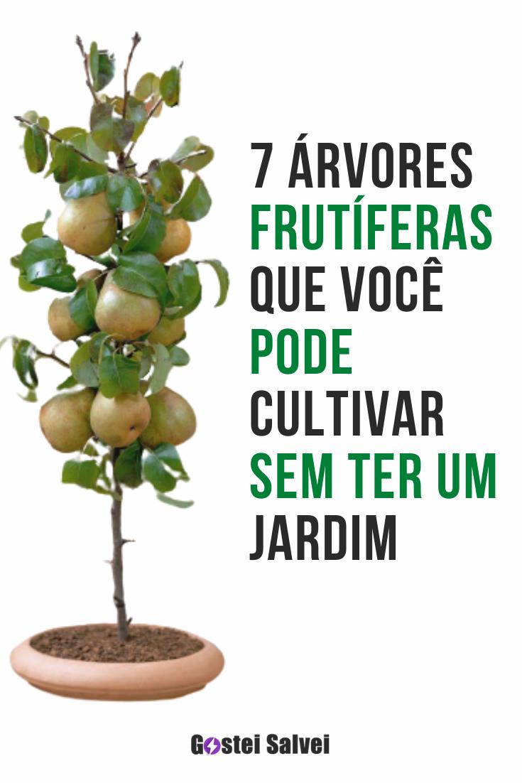 7 Árvores frutíferas que você pode cultivar sem ter um jardim