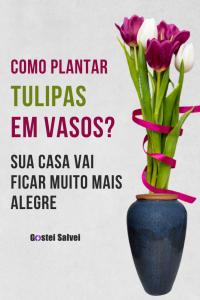 Como plantar tulipas em vasos? Sua casa vai ficar muito mais alegre