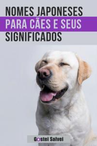 Nomes japoneses para cães e seus significados