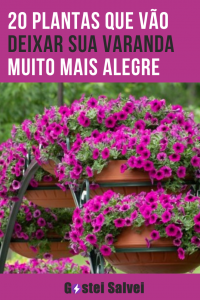 20 Plantas que vão deixar sua varanda muito mais alegre