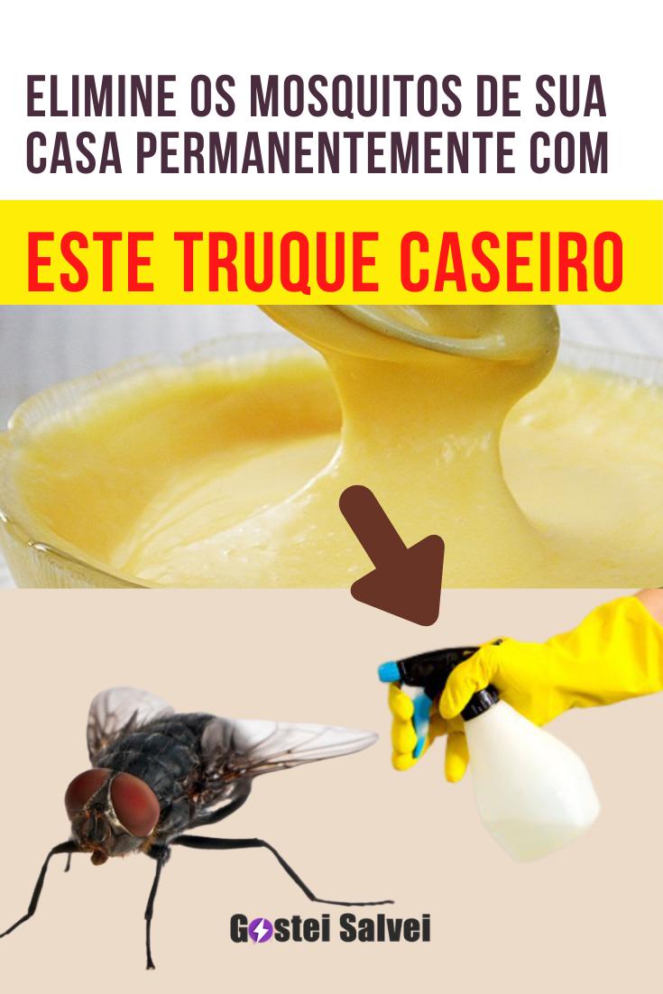 Elimine os mosquitos de sua casa permanentemente com este truque caseiro