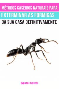Métodos caseiros naturais para exterminar as formigas da sua casa definitivamente