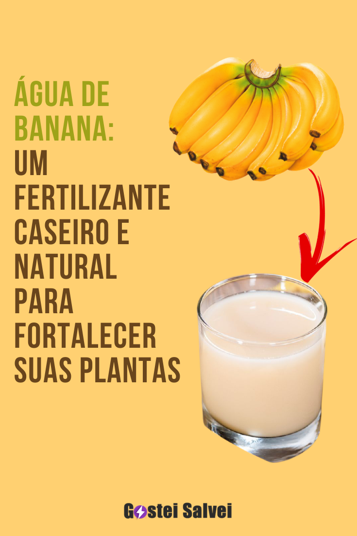 Água de banana: Um fertilizante caseiro e natural para fortalecer suas plantas