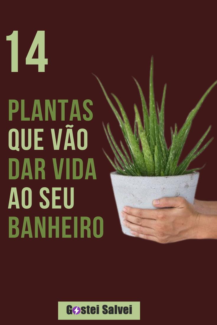 14 Plantas que vão dar vida ao seu banheiro