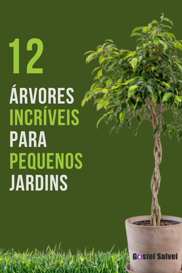 12 Árvores incríveis para pequenos jardins
