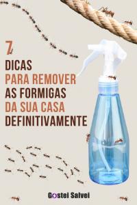 7 Dicas para remover as formigas da sua casa definitivamente