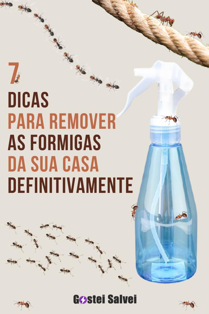 You are currently viewing 7 Dicas para remover as formigas da sua casa definitivamente