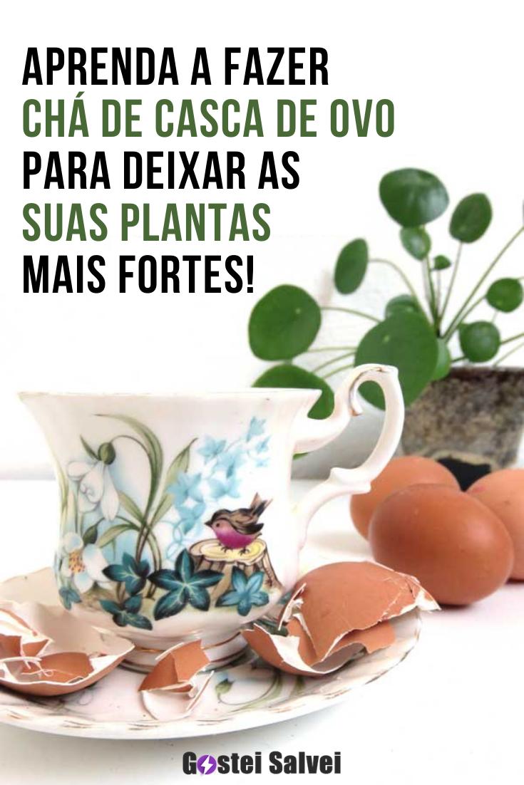 You are currently viewing Aprenda a fazer chá de casca de ovo para deixar as suas plantas mais fortes!