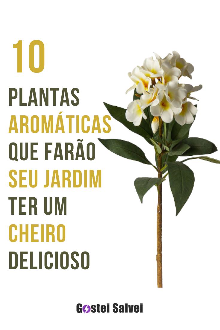 You are currently viewing 10 Plantas AROMÁTICAS que farão seu JARDIM ter um cheiro delicioso