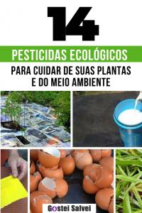 14 Pesticidas ecológicos caseiros para plantas