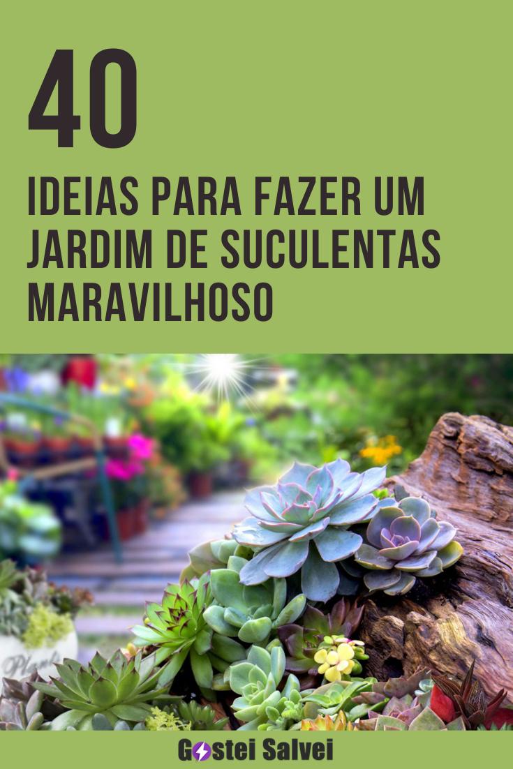 40 Ideias para fazer um jardim de suculentas maravilhoso