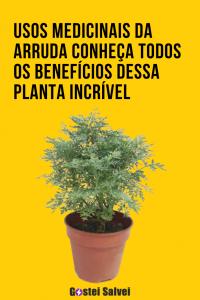 Usos Medicinais da Arruda – Conheça todos os benefícios dessa planta incrível