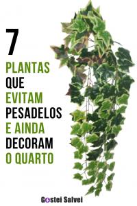 7 Plantas que evitam pesadelos e ainda decoram o quarto