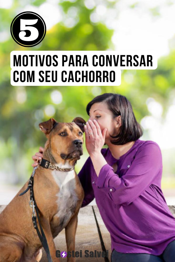 You are currently viewing 5 Motivos para conversar com seu cachorro