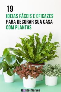 19 Ideias fáceis e eficazes para decorar sua casa com plantas