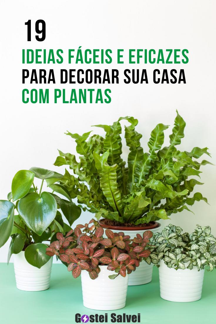 You are currently viewing 19 Ideias fáceis e eficazes para decorar sua casa com plantas