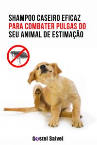 Read more about the article Shampoo caseiro eficaz para combater pulgas do seu animal de estimação