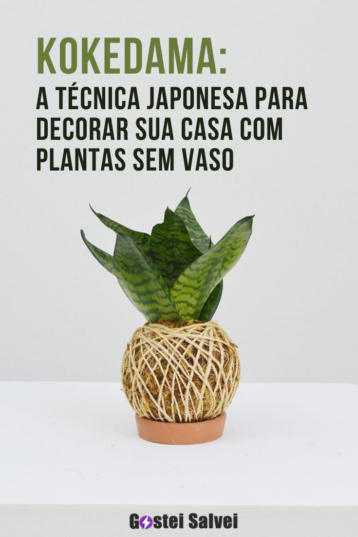 You are currently viewing Kokedama: A técnica japonesa para decorar sua casa com plantas sem vaso