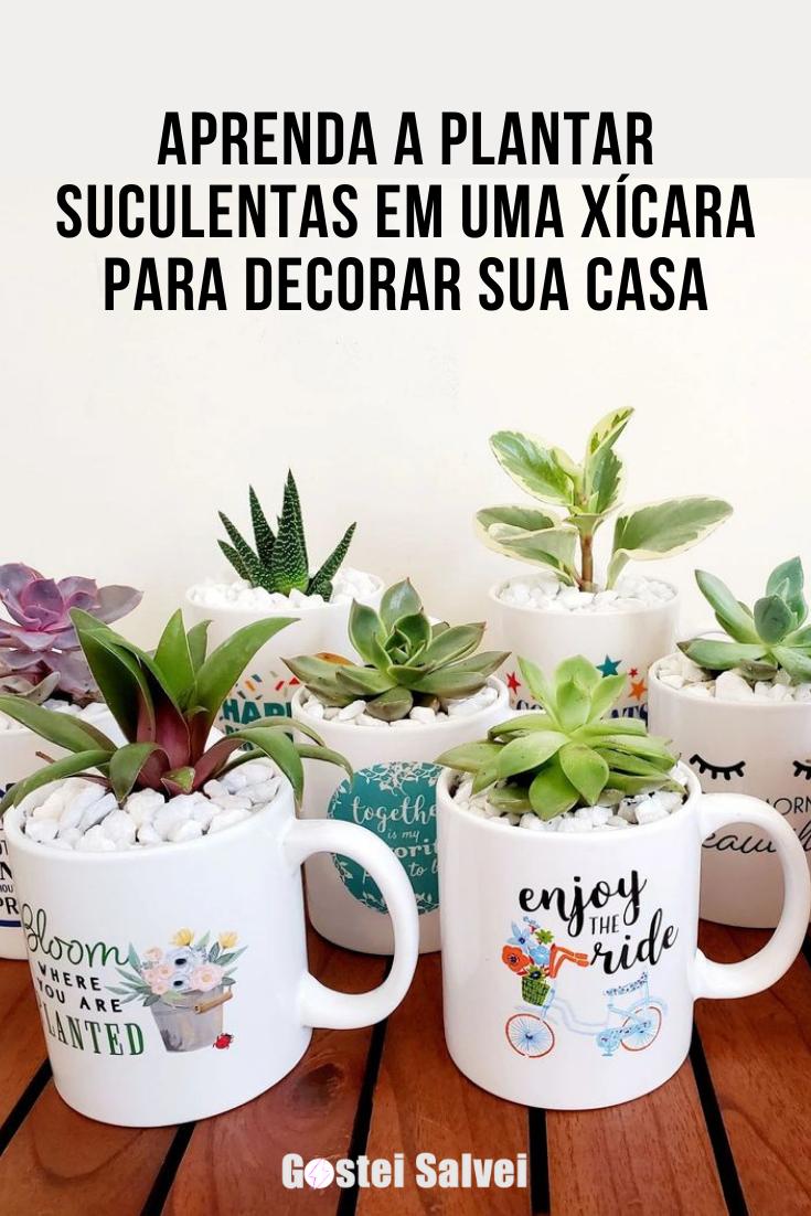 You are currently viewing Aprenda a plantar suculentas em uma xícara para decorar sua casa