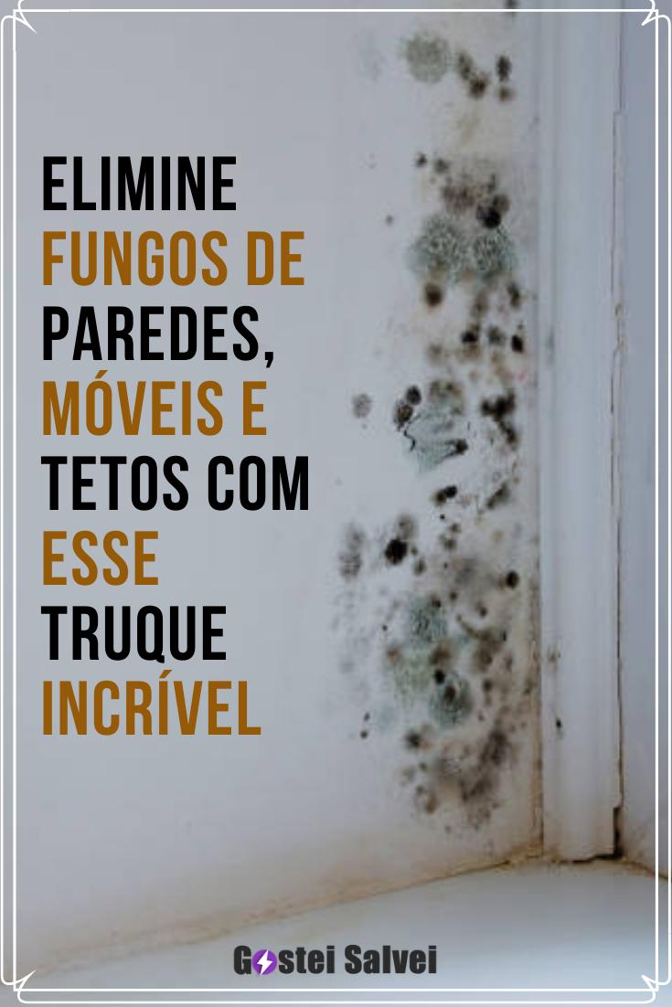 You are currently viewing Elimine fungos de paredes, móveis e tetos