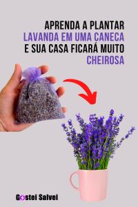 Read more about the article Aprenda a Plantar Lavanda Em Uma Caneca e Sua Casa Ficará Muito Cheirosa