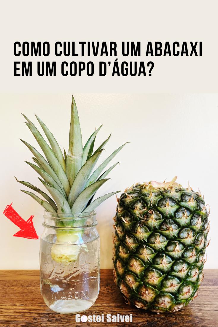 You are currently viewing Como cultivar um abacaxi em um copo d'água?