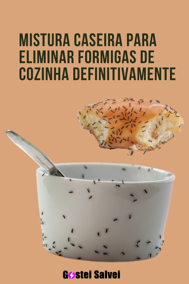 You are currently viewing Mistura caseira para eliminar formigas de cozinha definitivamente